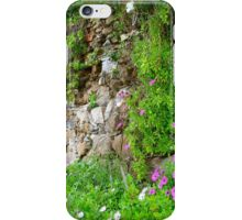 wall of wildflowers iPhone Case/Skin