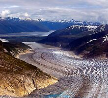 Glaciers/Rivers Of Ice by Nancy Richard