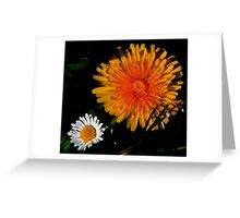DANDY N DAISY Greeting Card