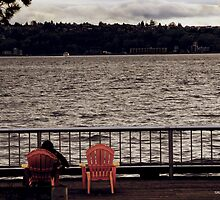 Evening by the Puget Sound by Turtle6