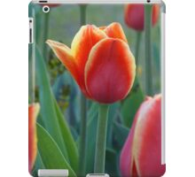 Tulips iPad cover iPad Case/Skin