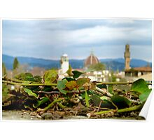 The duomo and the ivy Poster