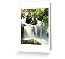 ~Nature is Pure~ Greeting Card