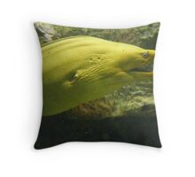 Yellow Eel. Throw Pillow