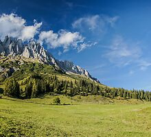 The Alps by Fabian Lackner