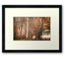 Monarchs of The Bush - Mount Wilson - NSW  - The HDR Experience Framed Print