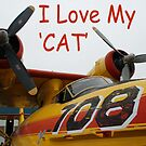 I Love My Cat by mark perry