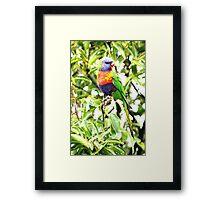Pear Thief! Framed Print