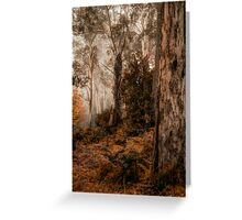 Bush Guardians  - Mount Wilson - NSW  - The HDR Experience Greeting Card