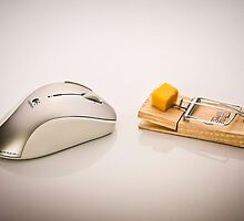 Mouse Trap by Mick Frank