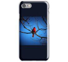 Proud Cardinal iPhone Case/Skin