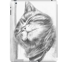 tabby cat scritching iPad Case/Skin