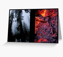 Sequoia Greeting Card