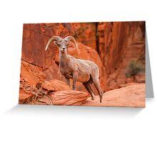 Red Rock Guardian Greeting Card