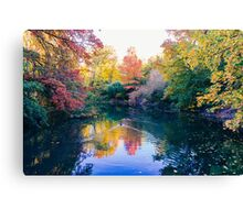 Foliage in central park Canvas Print