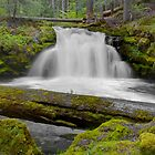 Whitehorse Falls 2 by 11th-Dimension