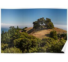 A View from Mount Tamalpais Poster