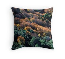 Cradle Colours  Throw Pillow