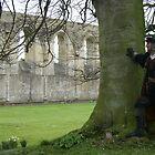 Glastonbury Abbey by Sally Barnett