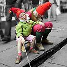 Gnomes by Sally Barnett