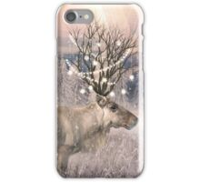 Stillness of Winter iPhone Case/Skin