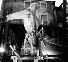 window by Sally Barnett