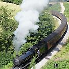Goathland Railway by Sally Barnett