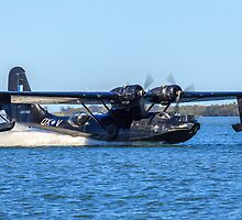 Catalina Touchdown by Michael Clarke