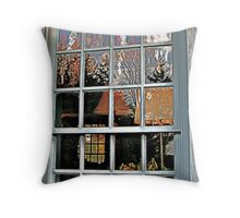 Window, Dey Mansion, Wayne NJ  Throw Pillow