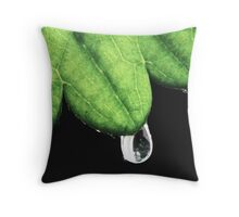 In One Drop Throw Pillow