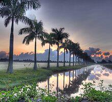 Morning in Lake Worth by Michaela Kopecka