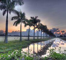 Morning in Lake Worth by Michaela Kopecka