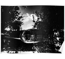 P.Coates- Mirror pond Poster