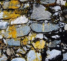 Rock Wall with Lichen by Ron Hannah