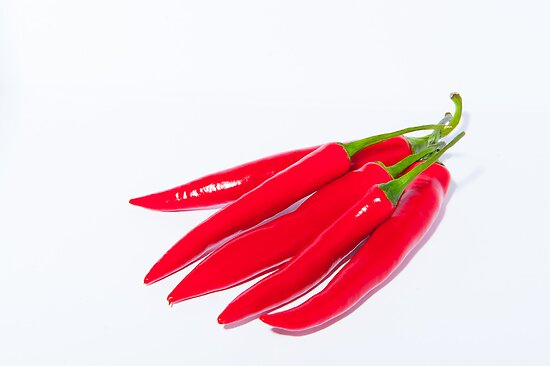Red Chillies by Michael Hollinshead