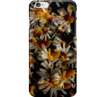 Dark Daisy iPhone Case iPhone Case/Skin