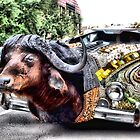 Water Buffalo Car by SuddenJim