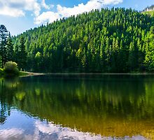 clear lake in the mountains on summer weather by pellinni
