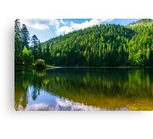 clear lake in the mountains on summer weather Canvas Print
