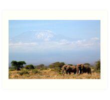 Elephants and Mt. Kilimanjaro Art Print