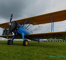 Stearman A King of Aviation by mariusvic