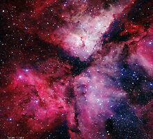 Carina Nebula by Suzanne  Carter