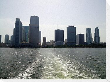 Downtown Miami by Nancy Badillo