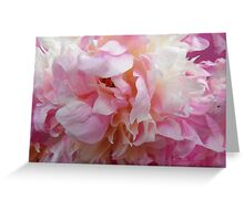 Pretty Peony Greeting Card