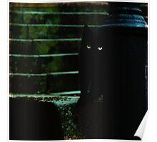 Black cat ;) Poster