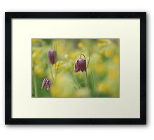 Meadow in bloom at Downton Abbey Framed Print
