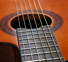 Acoustic guitar by TilenHrovatic