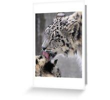 Snow Leopard Love Greeting Card