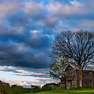 Lonely house by Penny Rinker