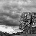 Lonely house B&amp;W by Penny Rinker